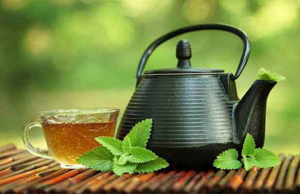 Tips to prepare green tea at home for weight loss